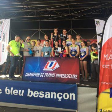 De nouvelles Médailles pour l'ASU Orléans !